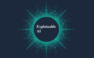 EXPLAINABLE AI, COMPRENDERE LA BLACK BOX